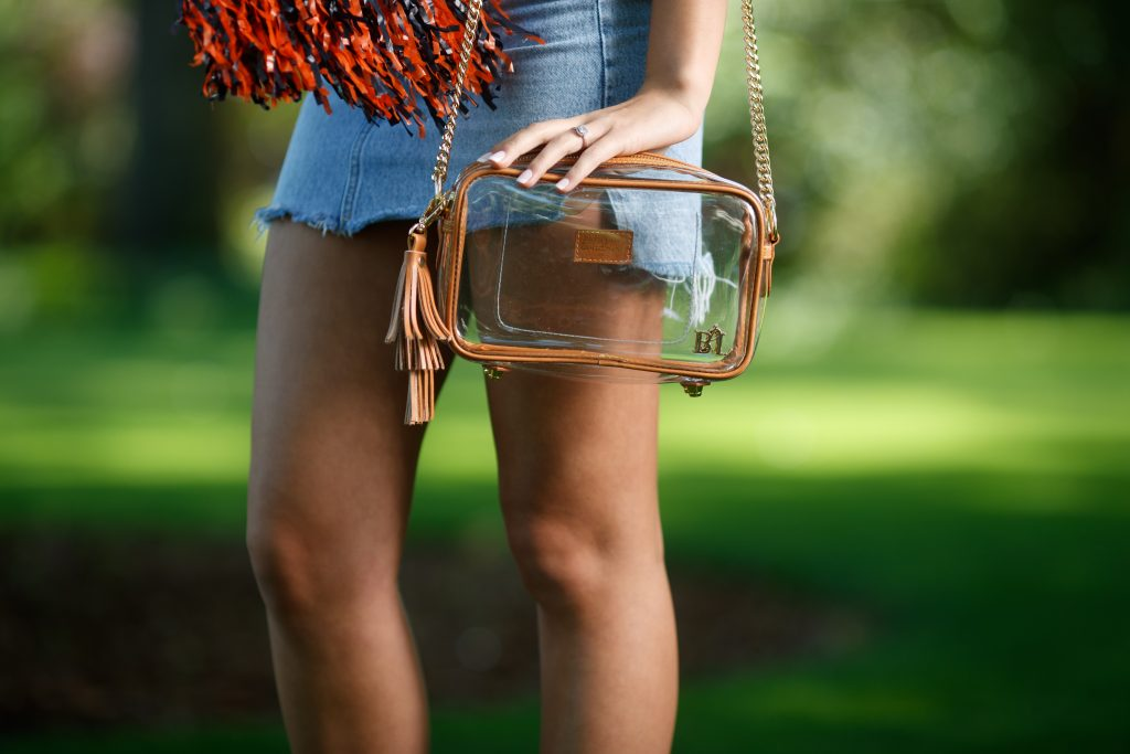 Inspired Southerners Purseption Bags