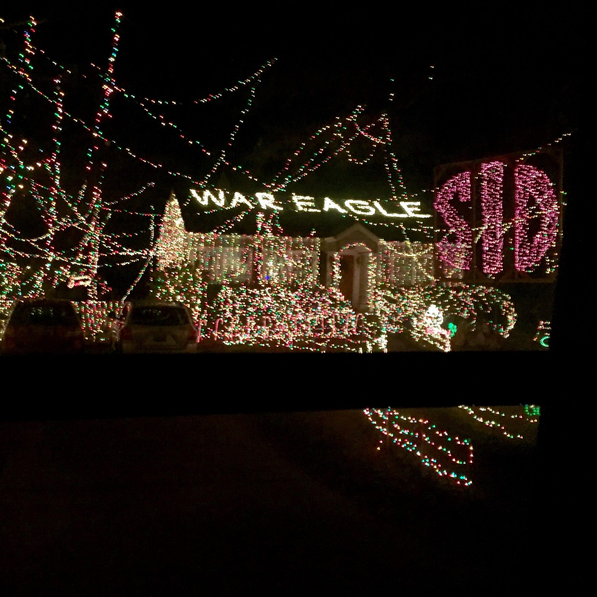 Finding My Christmas Spirit at the Whacky Tacky Christmas Light Tour