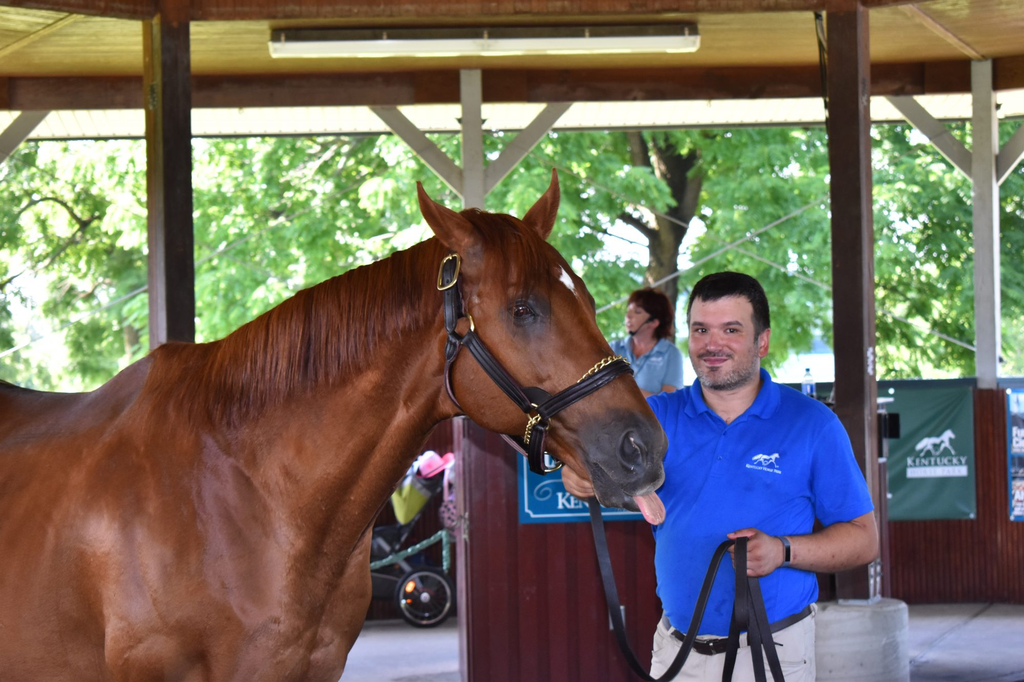 Plan your visit to Kentucky's Horse Park, America's only equine theme park